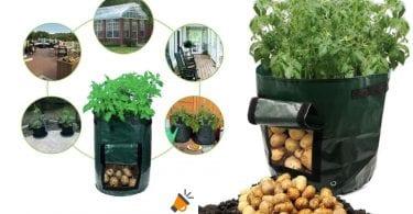 oferta bolsa plantar patatas barata SuperChollos